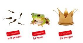 Teaser Frosch